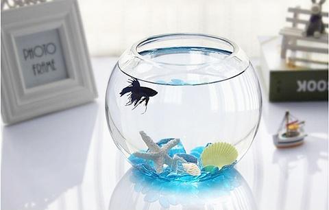 1x Wedding Clear Glass Fish Bowl Vase 15cm High We V46 700