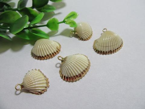 100pcs natural scallop shell pendants beads wholesale sh p ch17 100pcs natural scallop shell pendants beads wholesale sh p ch17 aloadofball Image collections